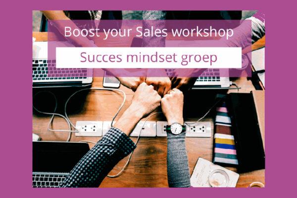 Boost-your-Sales-workshop-(Succes-Mindset-groep)